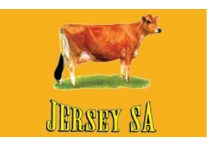 Jersey Cattle South Africa